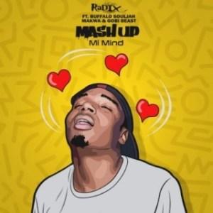 DJ Radix - Mash Up (Mi Mind) Ft. Makwa, Buffalo Souljah & Gobi Beast